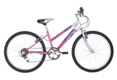 Raleigh Figaro 26 inch ladies