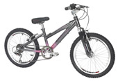 Raleigh Mystique 20 inch girls