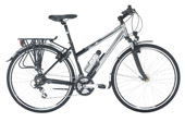 Raleigh Pioneer Metro GLX Plus Ladies