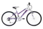 Raleigh Roma 26 inch ladies
