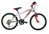 Raleigh ZeroG 20 inch boys