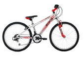 Raleigh ZeroG 24 inch boys