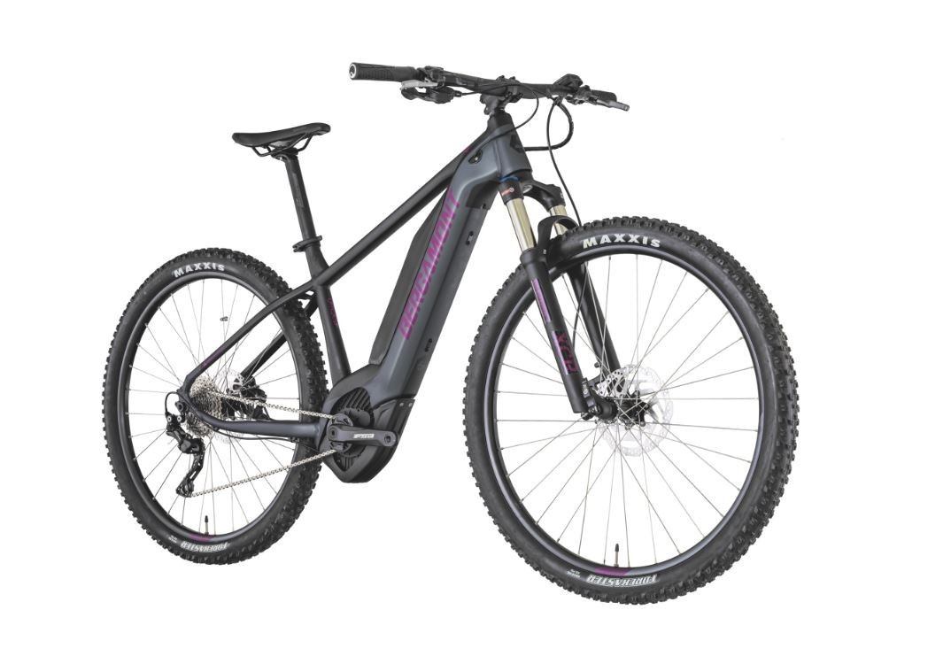Bergamont E-Revox 6 Fmn 29 - Hardtail 2019 Electric Bike