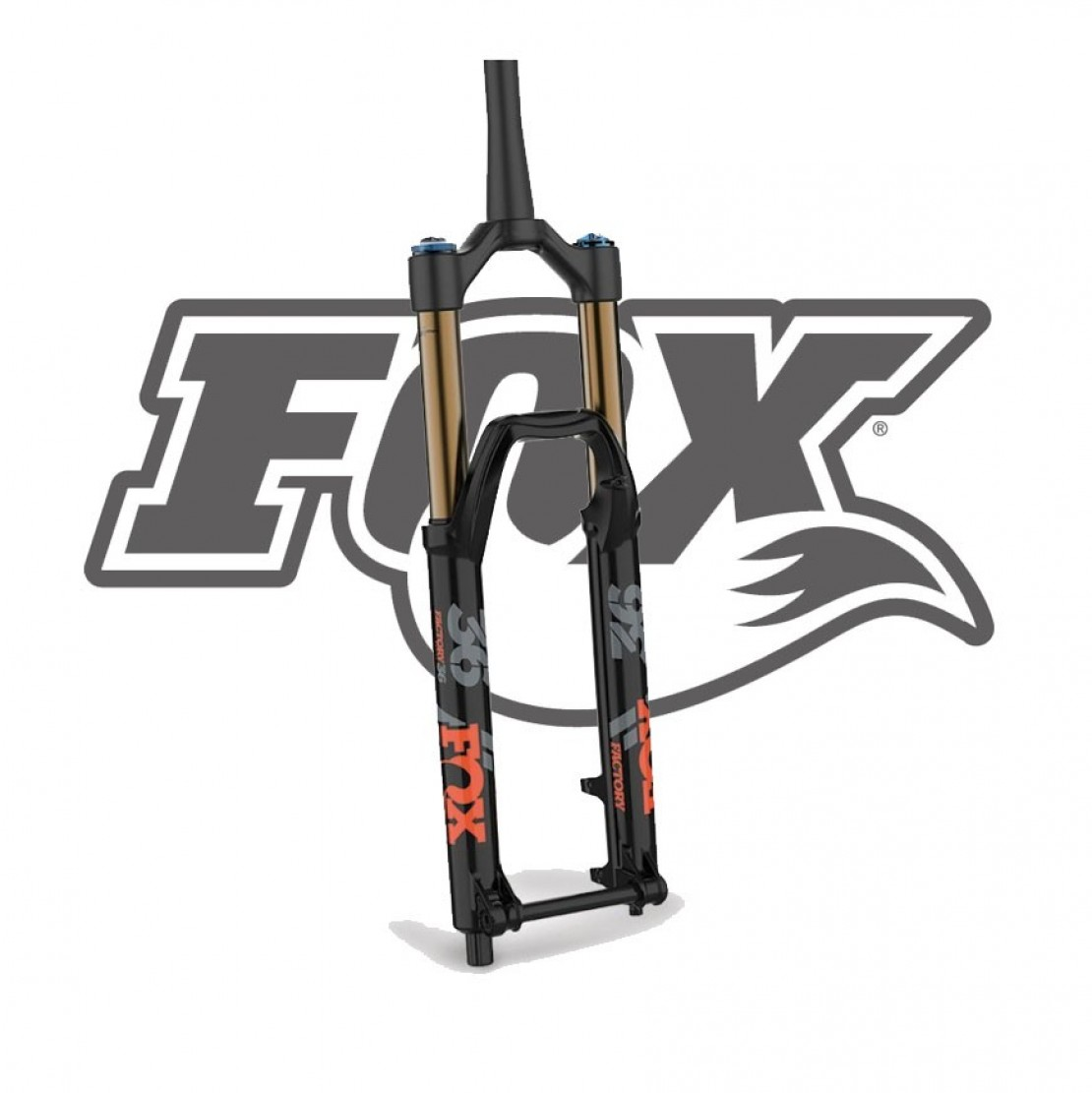 36 Float Factory 831 GRIP2 1.125 Fork 2019